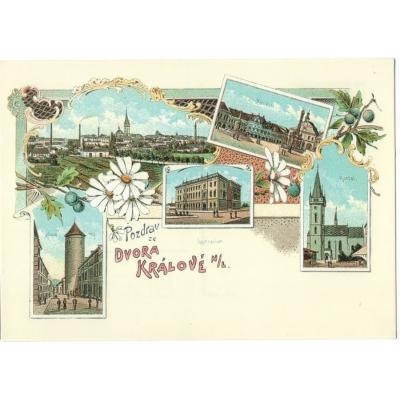 Dvůr Králové nad Labem - pohlednice reprint