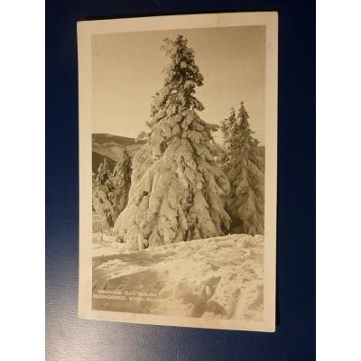 Česoslovensko - pohlednice Krkonoše, Zimní pohádka 1936