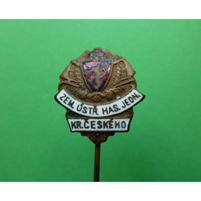 Badge Provincial Central Fire unity Kingdom of Bohemia, original