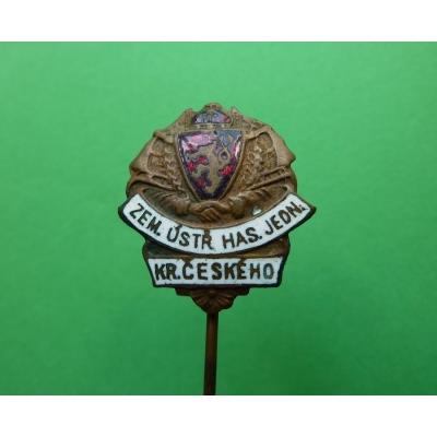 Odznak Zemská ústřední hasičská jednota království Českého, originál