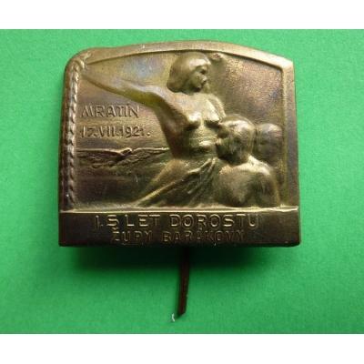 1. slet dorostu župy Barákovy, Mratín 1921, odznak jehla