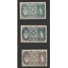 Rakousko - sada 3 nouzových bankovek 1920, Hausmening
