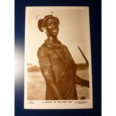 Afrika - Eine Postkarte Shilluk des Weißen Nil