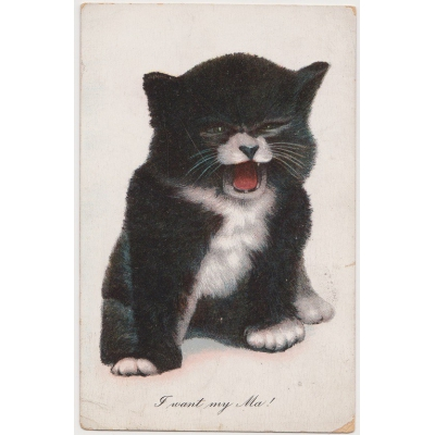 "Postcard ""I want my Ma!"" 1910"