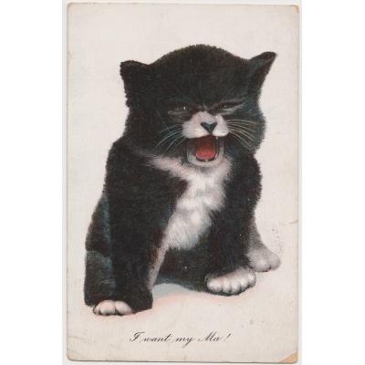 """Postcarte """"I want my Ma!"""" 1910"""