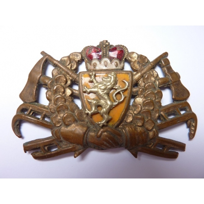Czechoslovakia - Fire cap badge, the first republic, enamel, original