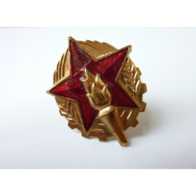 Czechoslovakia - fireman's badge on his cap, the original
