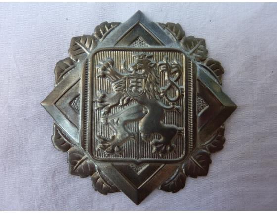 Hasičský odznak na přilbu