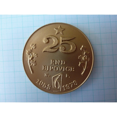 Iron ore and nonmetallic mines Ejpovice - Medal 25 years