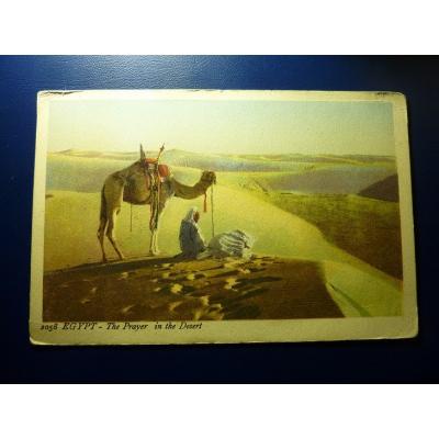 Afrika - Ägypten Postkarte, Das Gebet in der Wüste