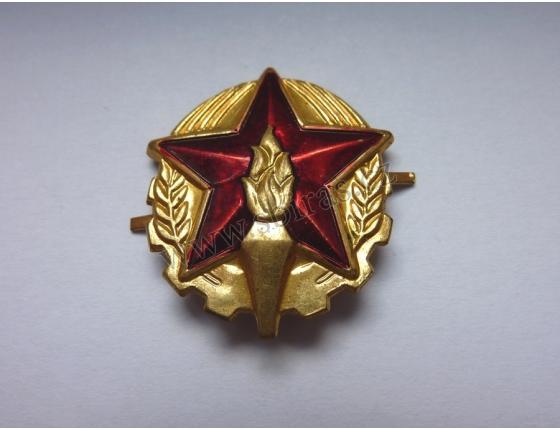 Tschechoslowakei - Feuerwehr Abzeichen an der Mütze, das Original