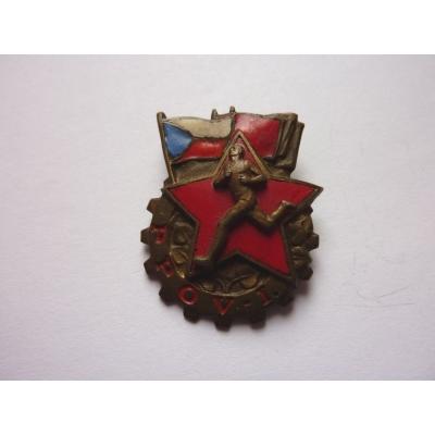 Armádní odznak zdatnosti 1. třídy připínací